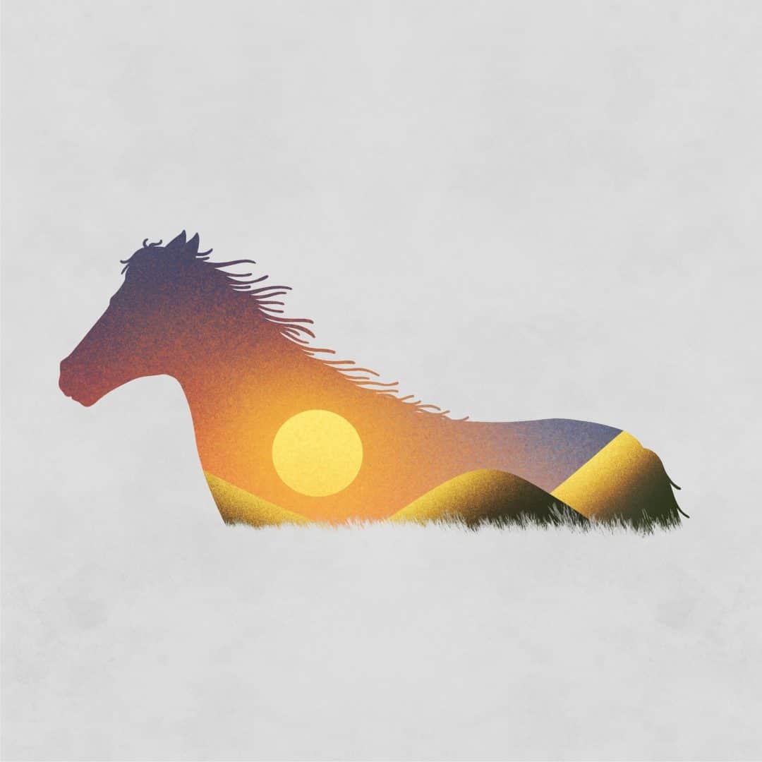 Les chevaux dans la peau